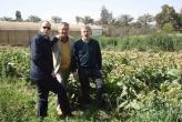 Cairo, Egitto, Dr. Sergio Tommasini, Carlo Ghilardi e Prof. Corrado Fogher